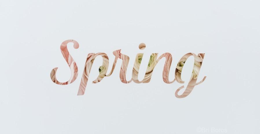 Daltana Spring Drill  Print