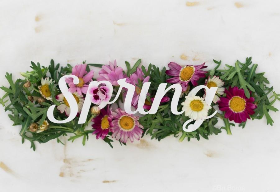 Daltana Spring Irill  Print