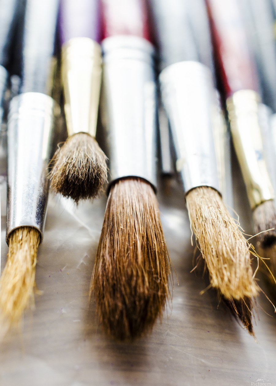 The Artists Brushes  Print