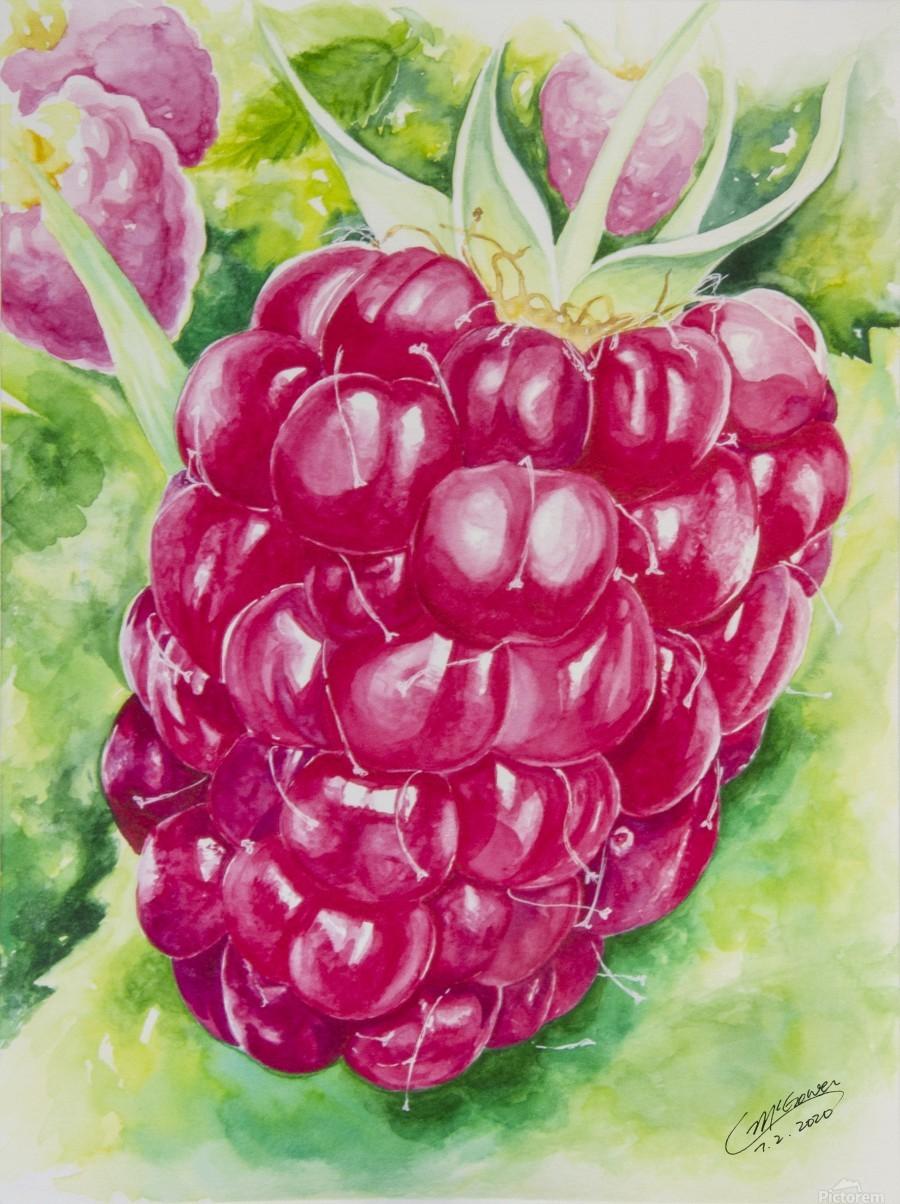 Summer Flavor: Raspberry I  Print