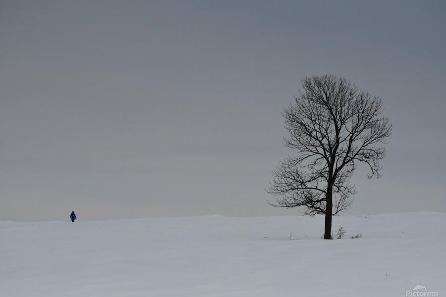 Marche hivernale  Imprimer