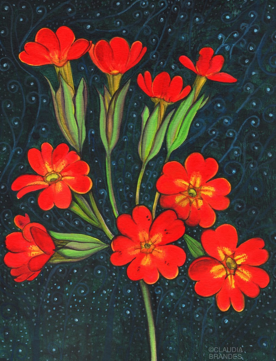 Red flowers shining in a magical starry night  Print