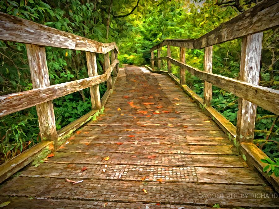 Bridge in the Sanctuary  Print