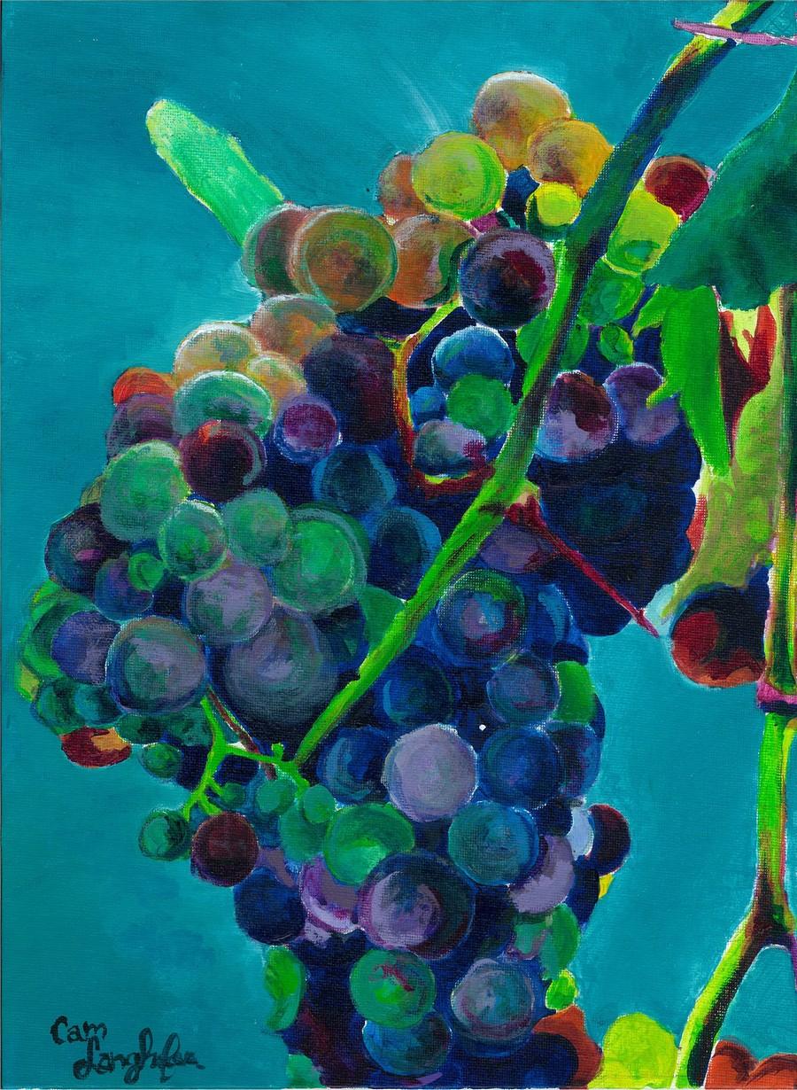 Grapes  Print