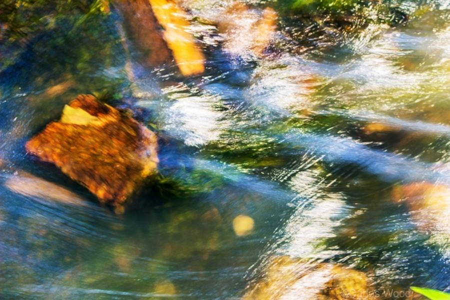 River I  Print