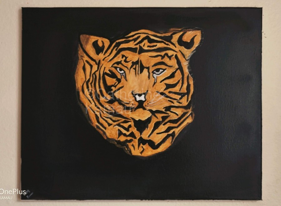 Tiger Face  Print