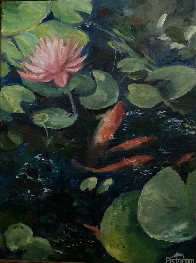 Koi with water lily   Print