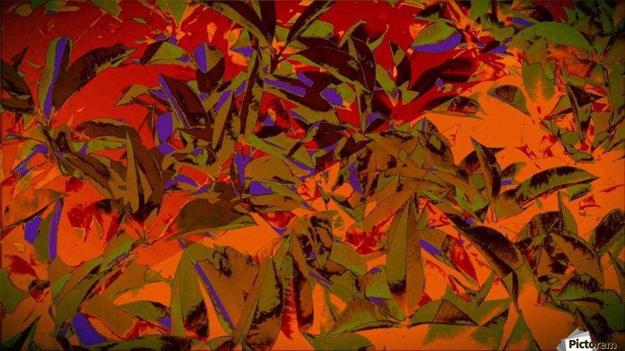 bushesabstract , Chazzi R  Davis ,