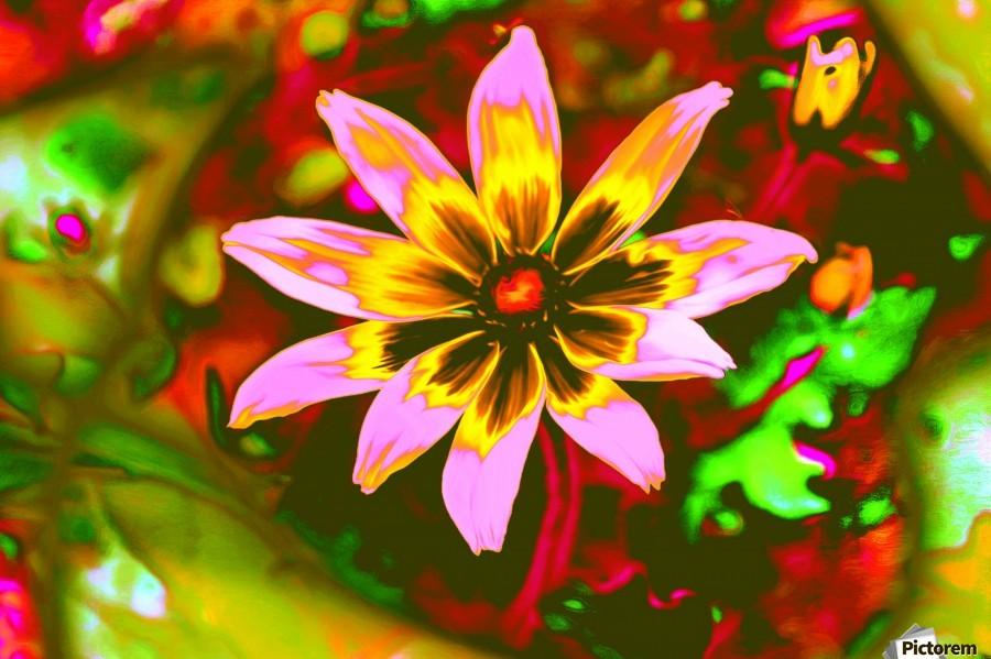 flowerPowerWILD  Print