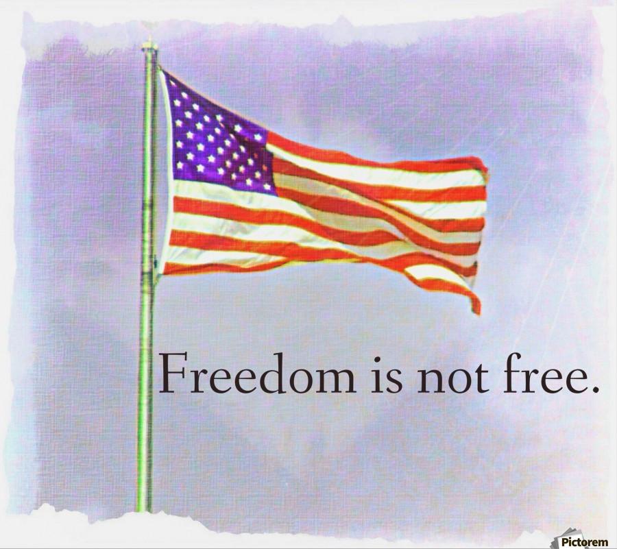 freedomIsnofree , Chazzi R  Davis ,
