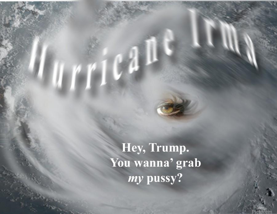 HurricaneIrma  Imprimer