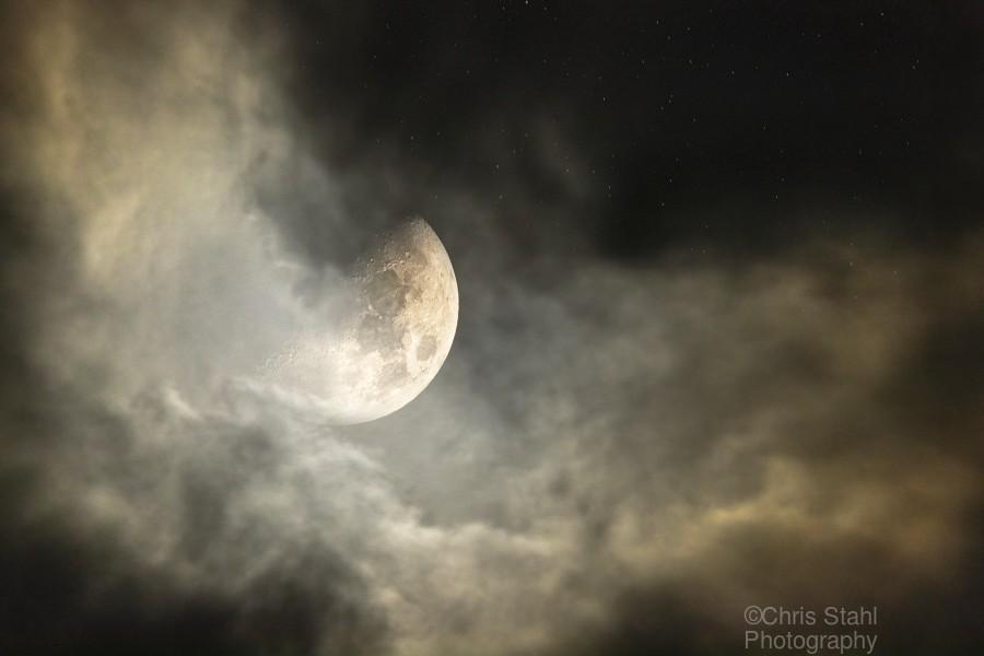 Goodnight Moon   Print