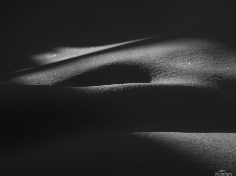 ombres dans la neige  Print