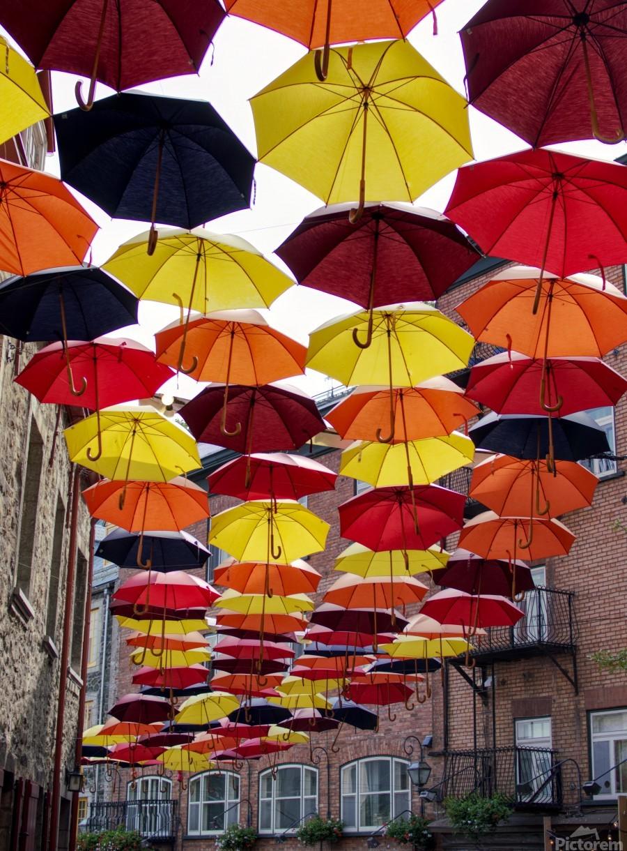 parapluies  Print