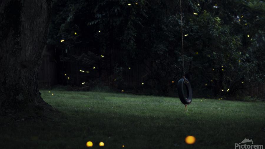 Fireflies in Pennsylvania  Print