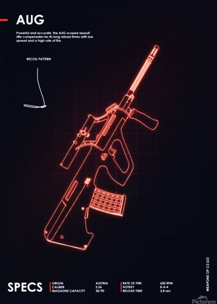 AUG CSGO WEAPON  Print