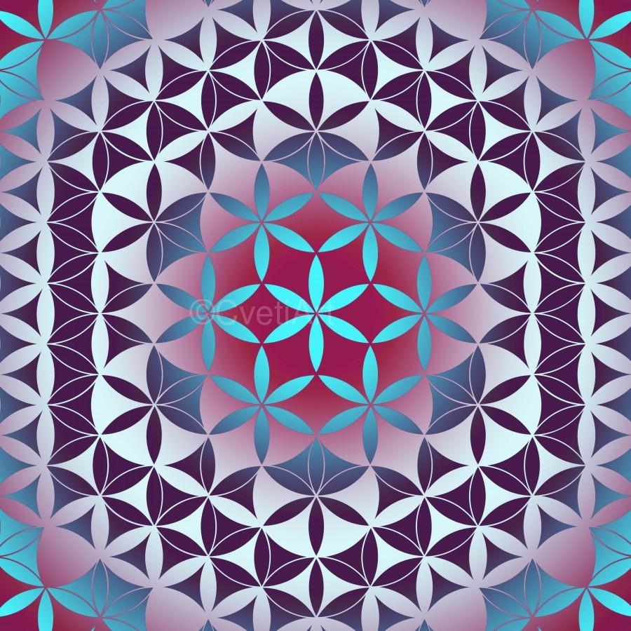 Flower of Life Hexagon Pattern  Print