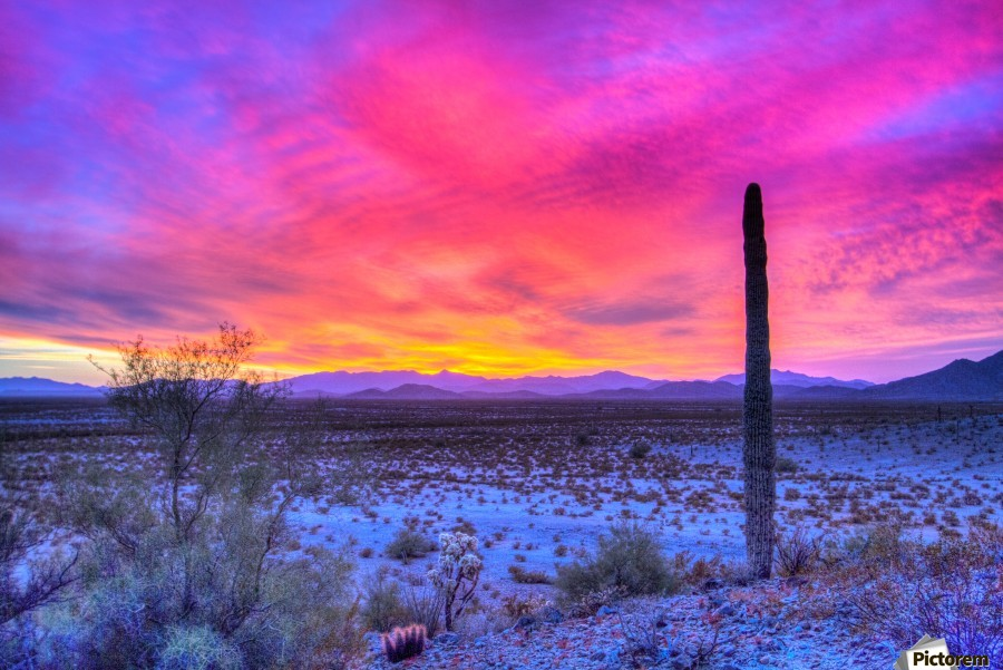 Sonoran_sunset  Print
