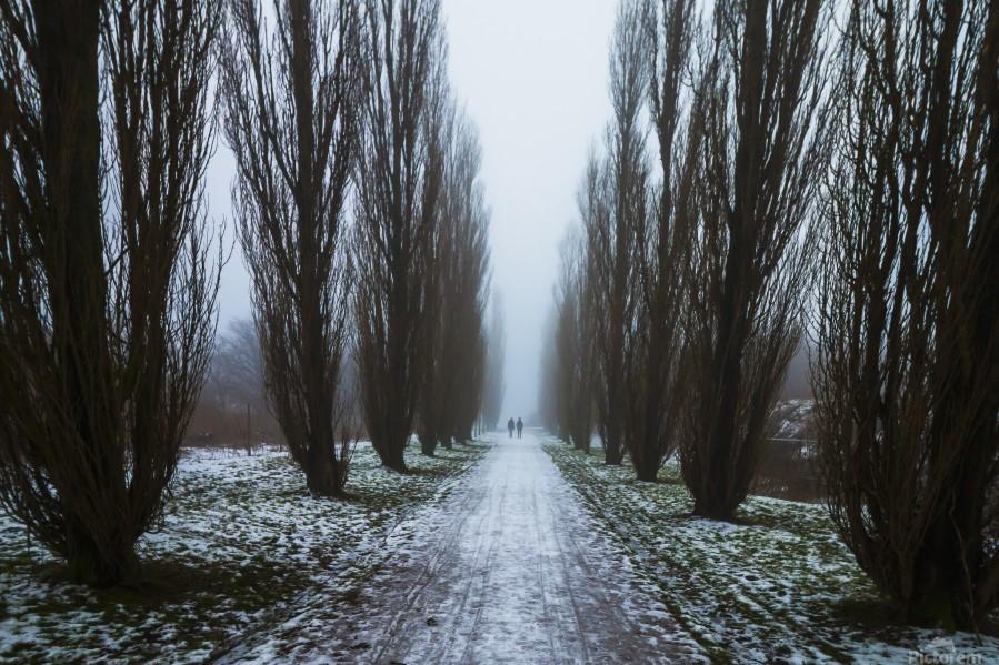 Symetric walk path in fog  Print