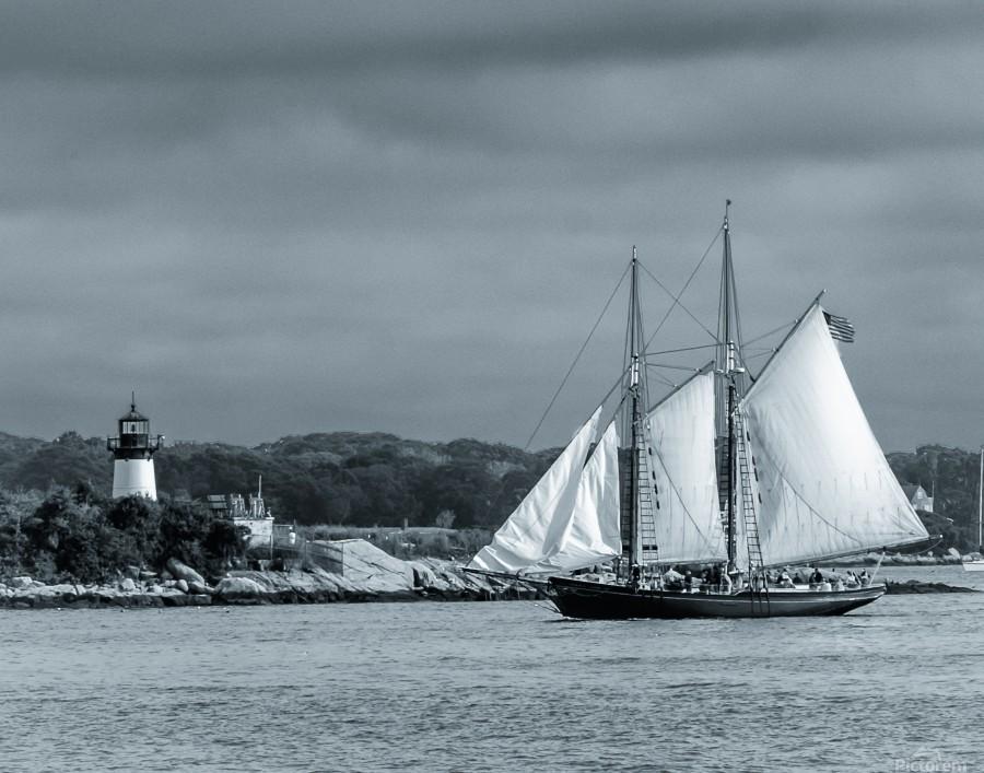 Harbor Cruise  Print