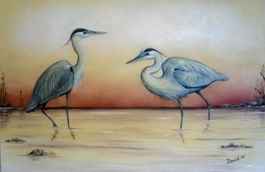 Blue Herons  Print
