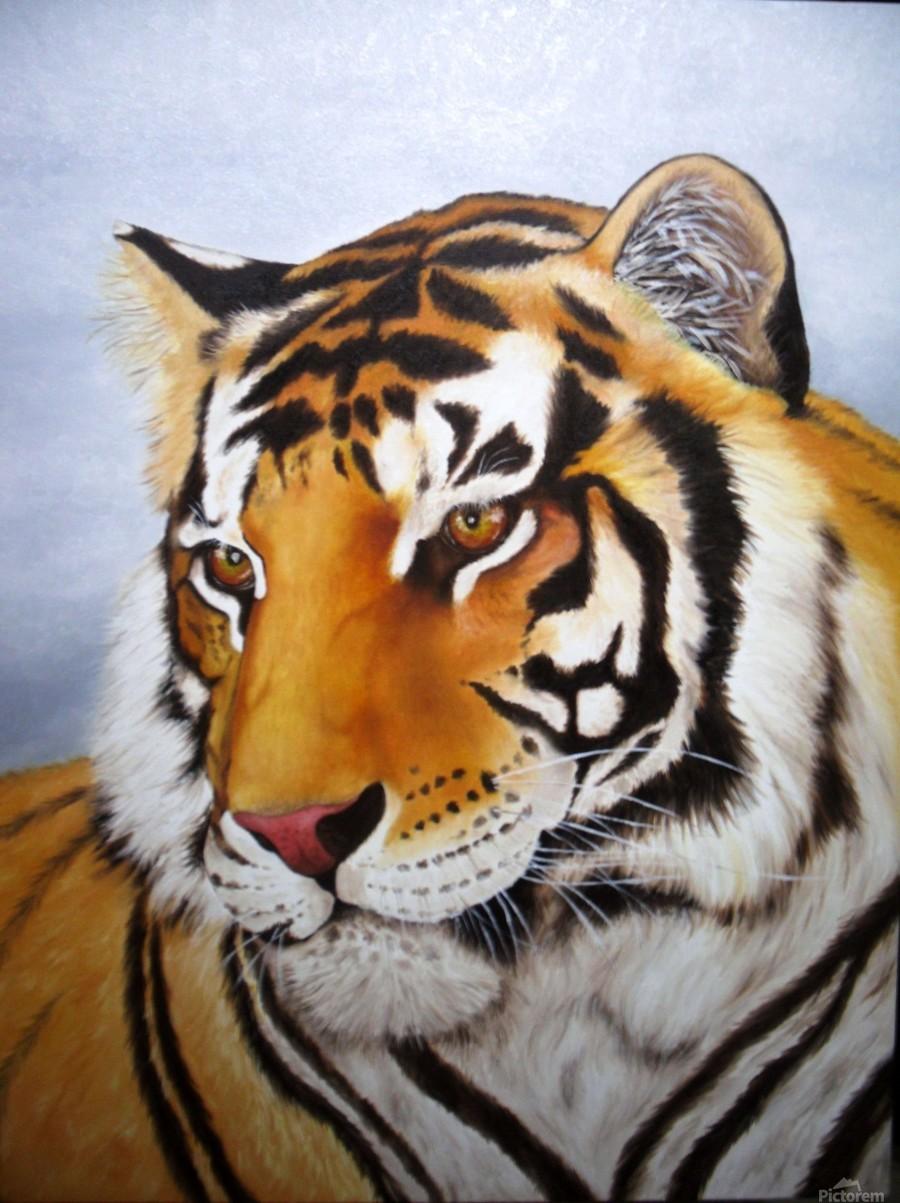 Картинки нарисованные цветные художниками с тигром, мужу