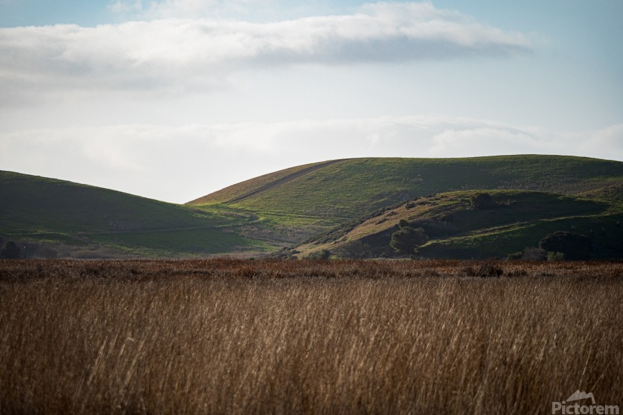 Coyote Hills During Sunset  Print