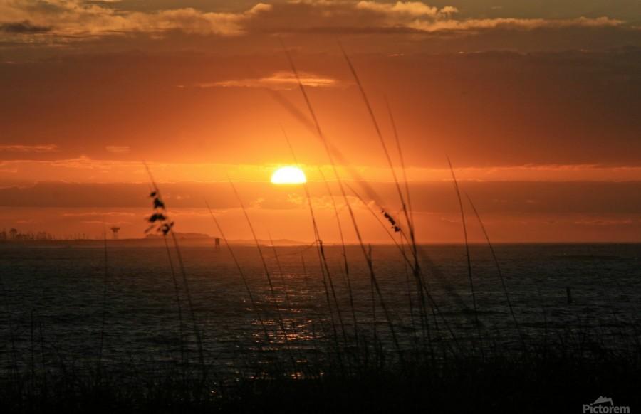 Sea Grass Sunset  Print