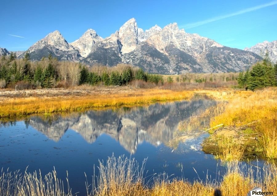 Beavers View of Tetons  Print