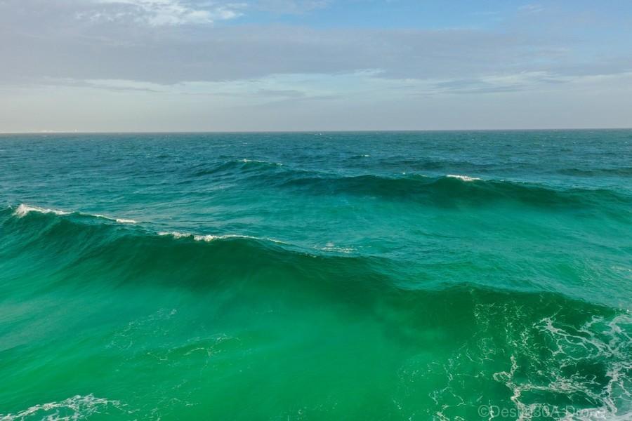 Big Wave  Print
