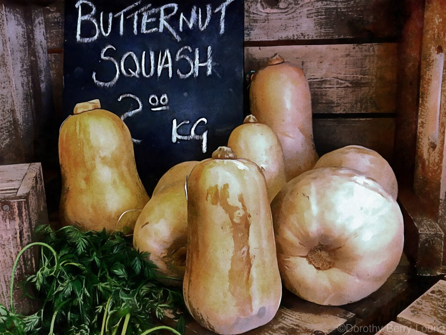 Butternut Squash Sale Display  Print
