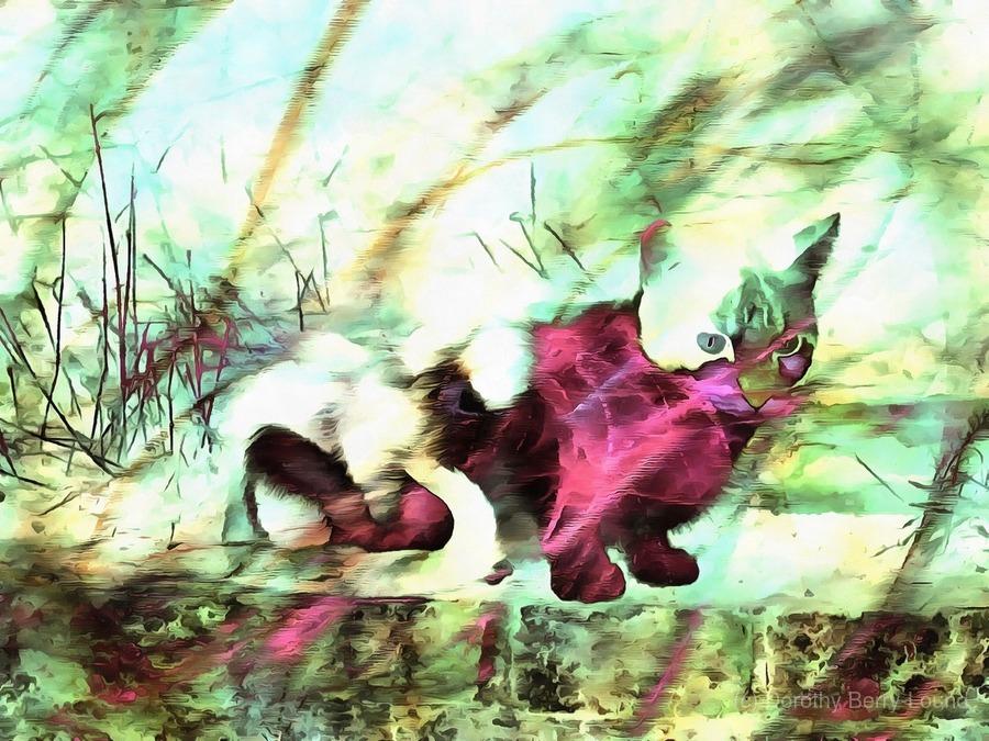 Cat Spirit  Print