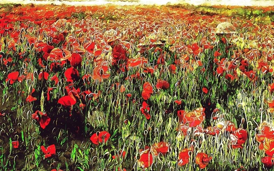 Hidden in the Poppy Fields  Print