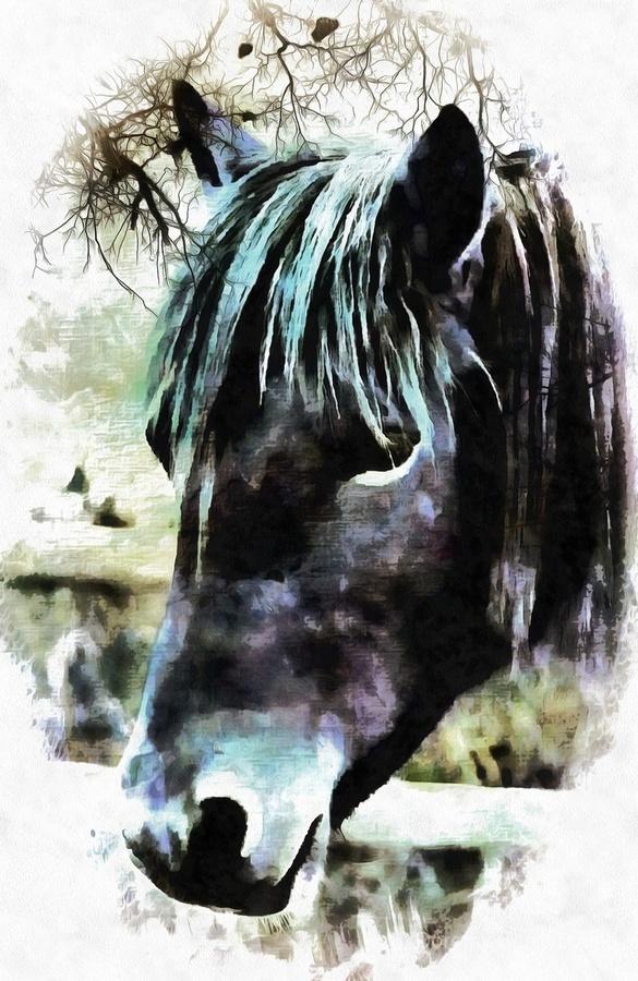 Horse Spirit Guide  Print