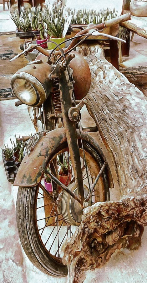 Old Rusty Motorbike Against Tree Stump  Print