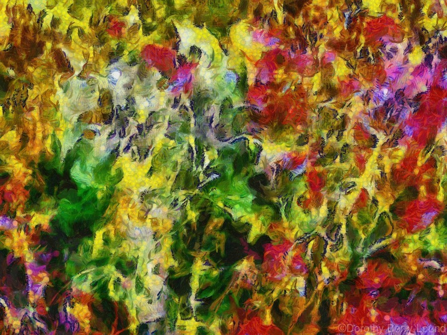 Poppy Abstract 2  Print