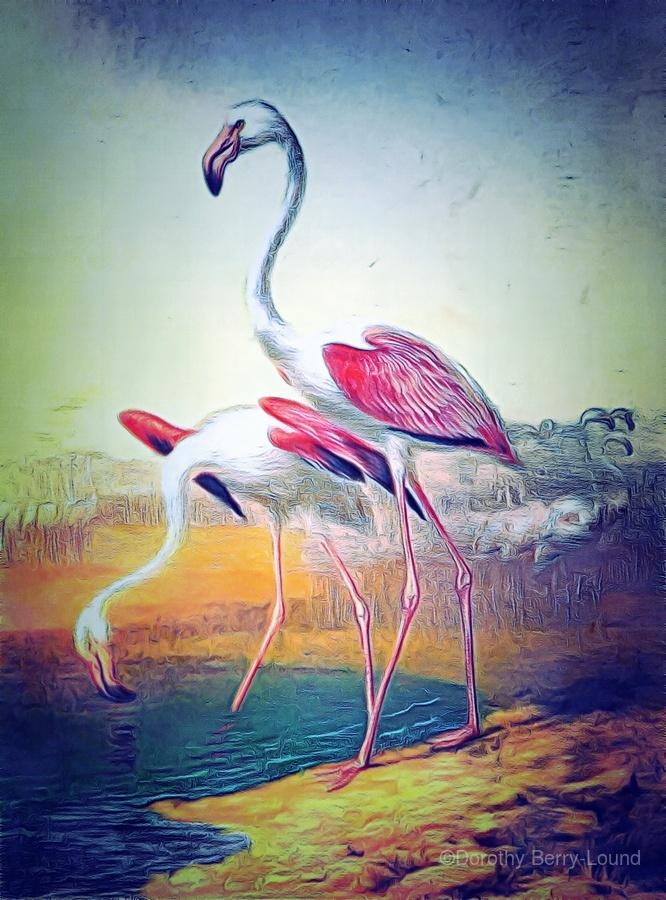 Regiment of Flamingoes  Print