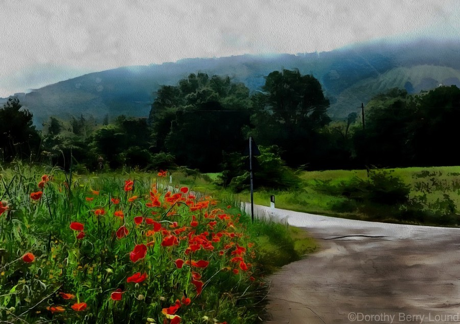 The Poppy Road to Happiness  Print