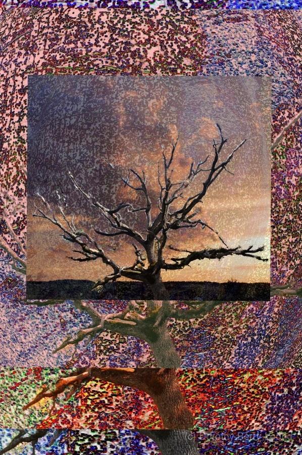 Tree Layers 5  Print