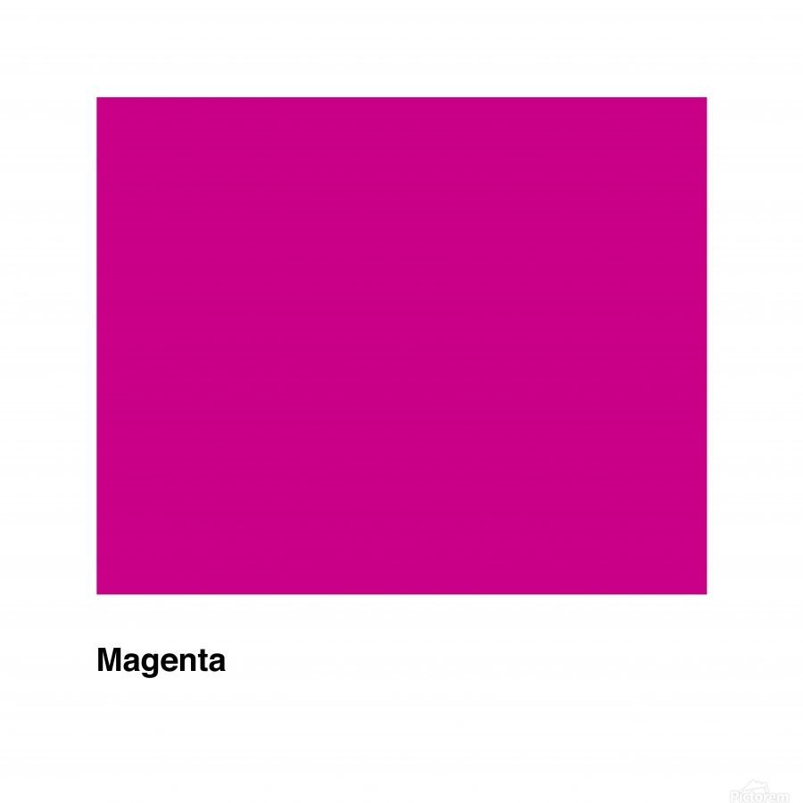 Solid Magenta Process color  Print
