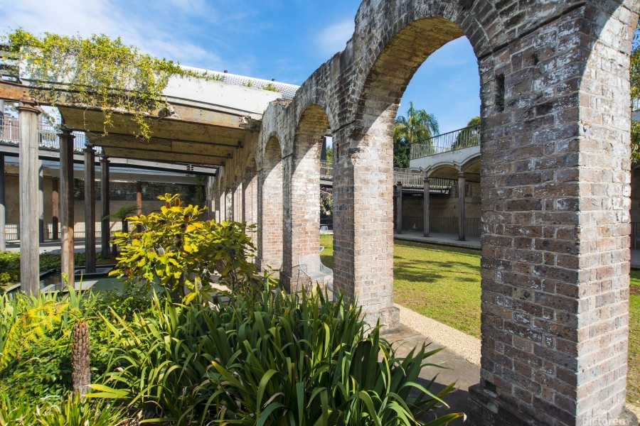 Paddington Reservoir gardens  Print