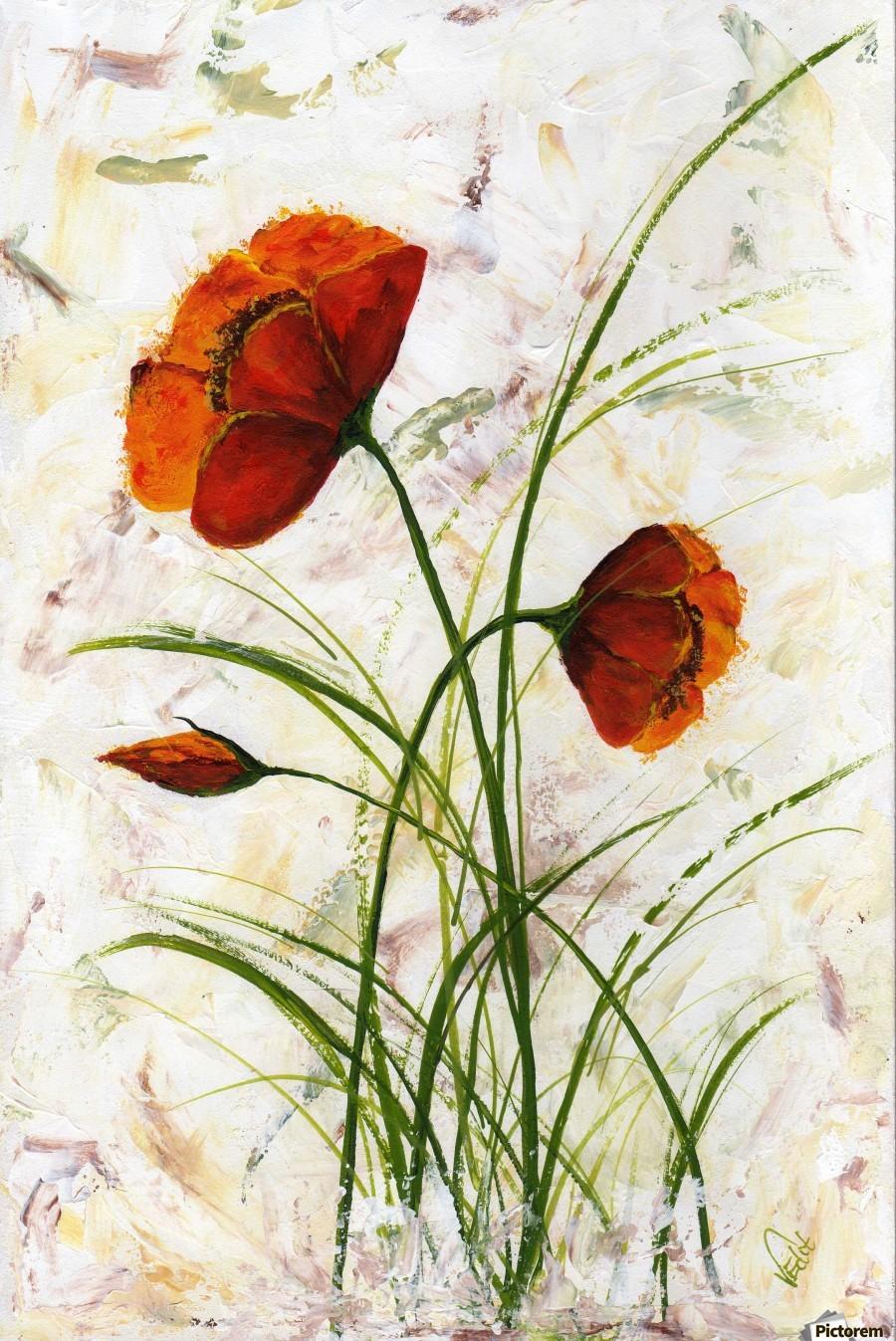 Red poppies 004 Edit Voros   Print