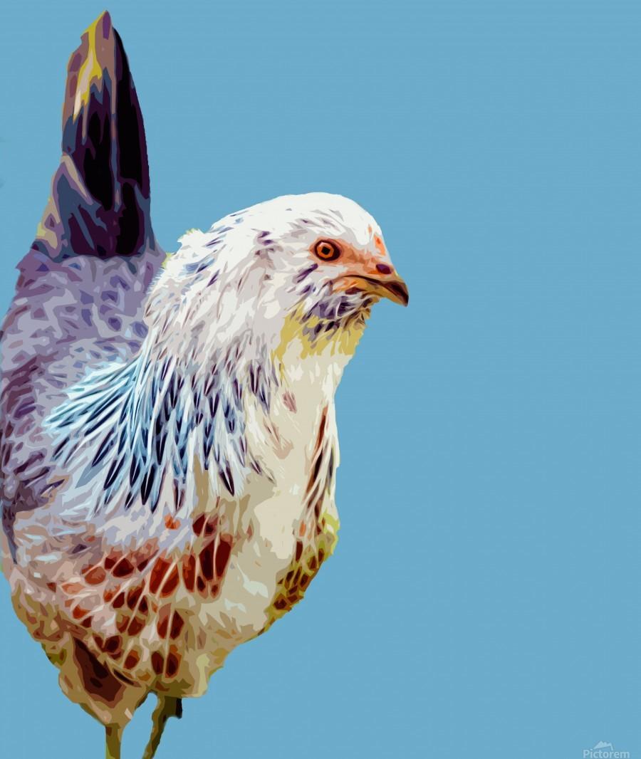 chicken pop art blue  Print