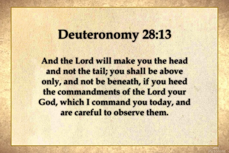 Deuteronomy 28 13 Scripture On The Walls Canvas