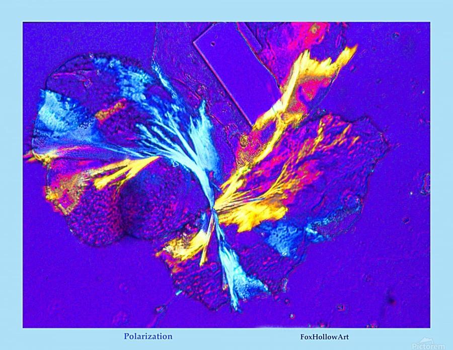 Polarization - Taken With High Powered Microscope  Print