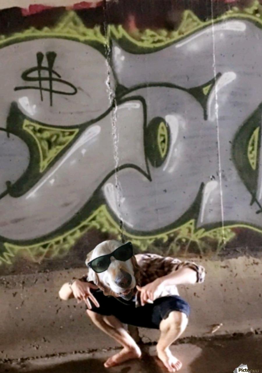 Graffiti Dawg  Print