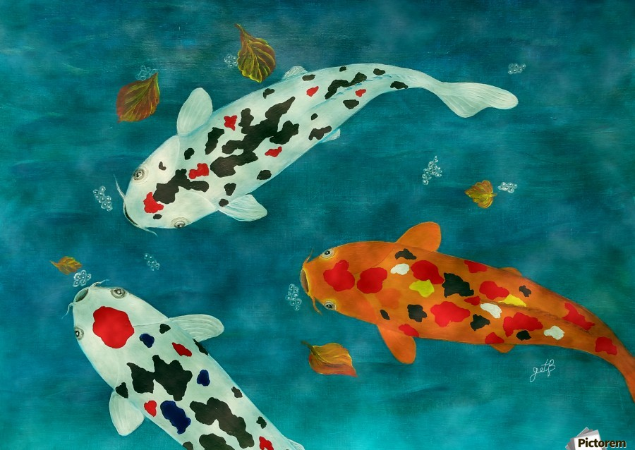 Koi fish acrylic painting images for Pictures of coy fish