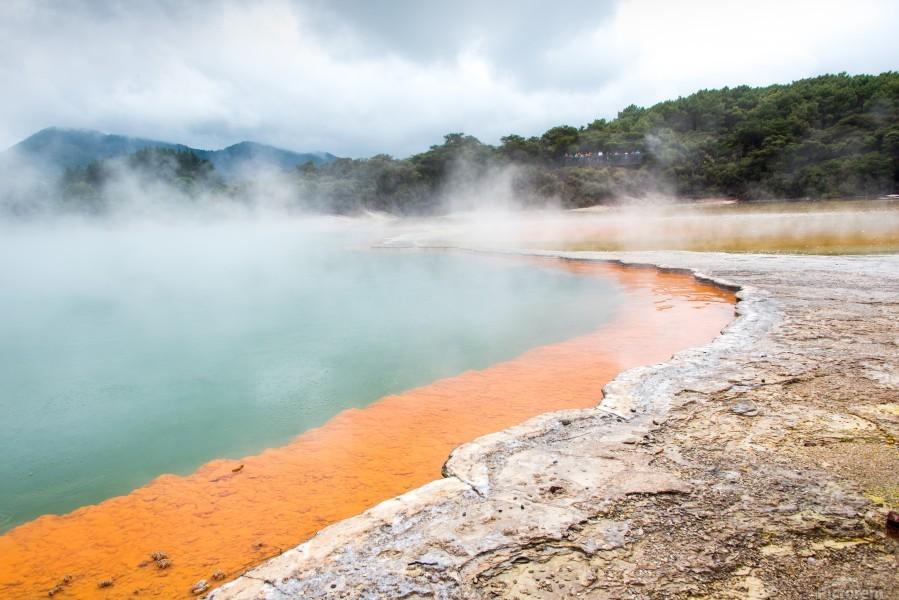Rotorua Hot pool with steam New Zealand  Print