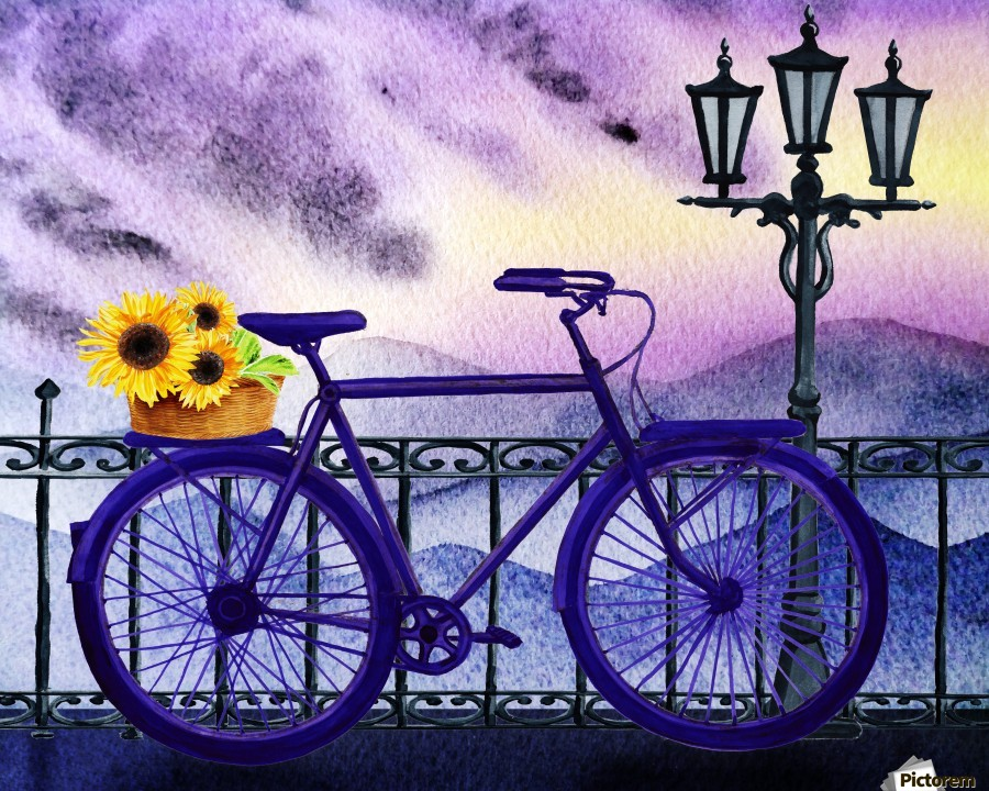 Bicycle And Sunflowers  Print