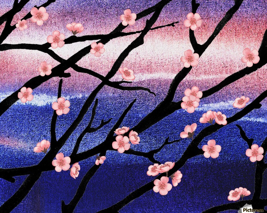 Cherry Blossoms  Print